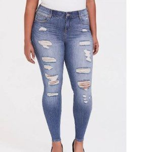 Plus Size Destructed Skinny Jeans